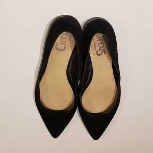 Circus by Sam Edleman Pointed Toe Flats Size 9